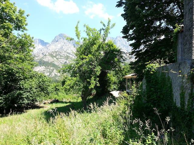 Un havre de paix entouré de montagnes - Bocognano