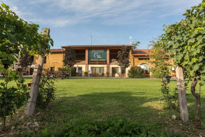 Charming house in the vineyard - Gigi