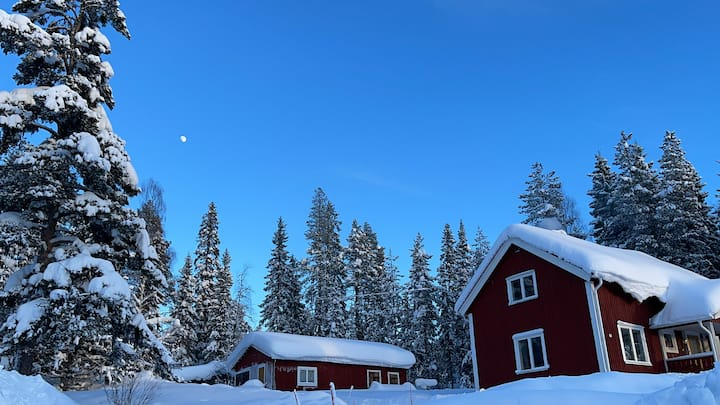 Cosy cottage in picturesque Swedish Lapland