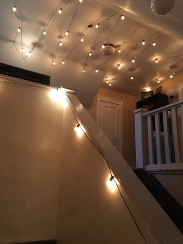 Cozy Little Italy 1BD Apt. - Cleveland - Appartement