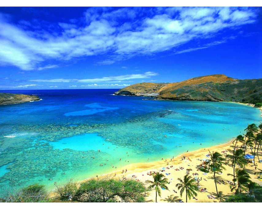 Hanauma Bay is 10 minute walking distance from our house