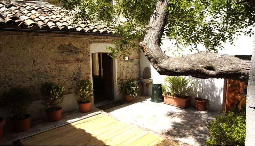 l'albero di giuggiolo - centro storico - Cosenza - Hus