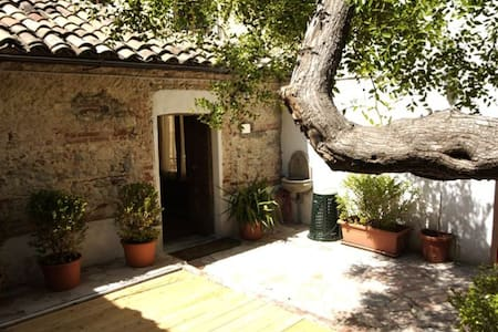 l'albero di giuggiolo - centro storico - Cosenza
