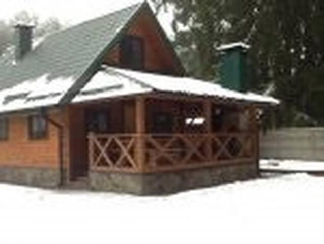 Деревянные домики в лесу