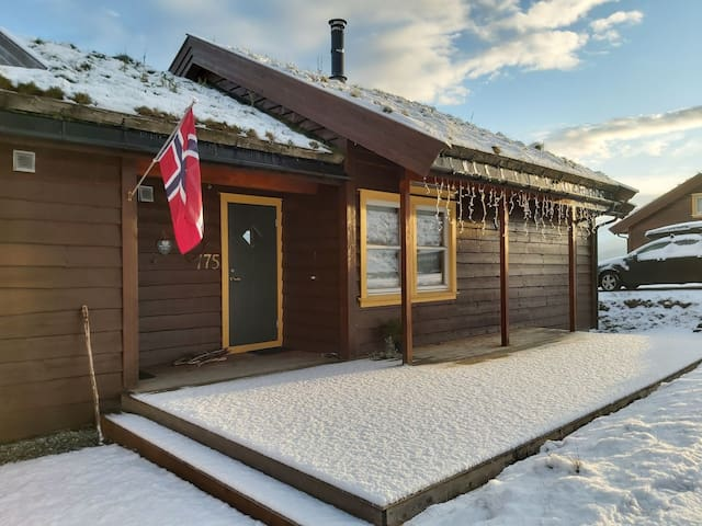 Mountain apt. 300 m from skii-lift. 5 beds.