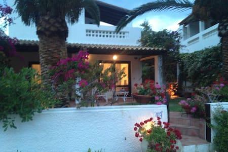 Stunning villa in Porto Hydra - Argolis - Talo