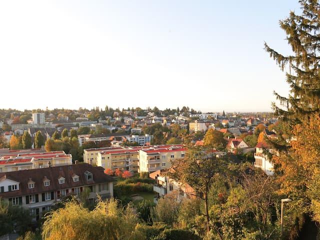 Vogelperspektive auf Basel