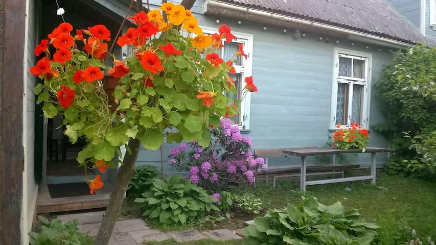 Apartment near the sea. Garden place