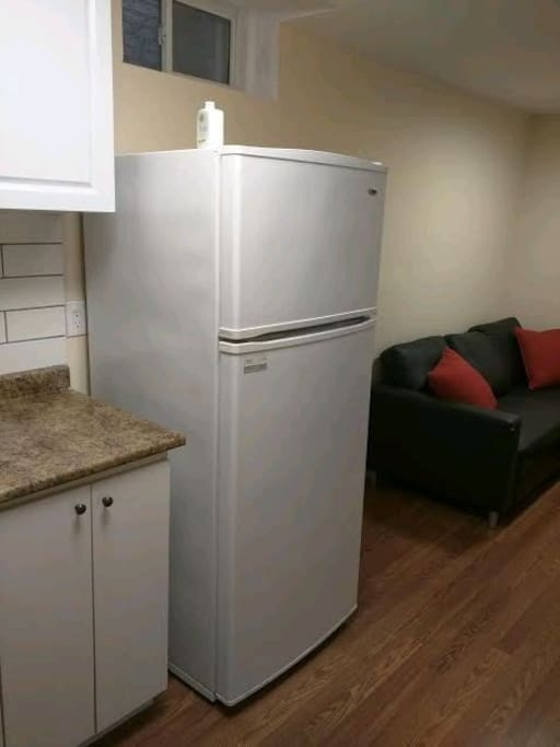 Kitchen area and Fridge