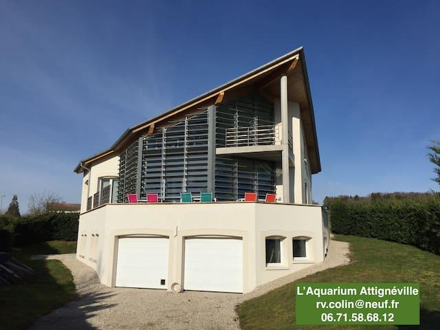 l'Aquarium Attignéville cybevasion