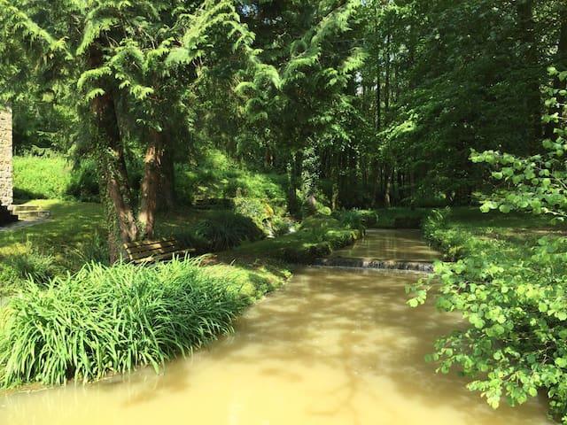 magnifique moulin en pleine nature - Courmangoux - Haus