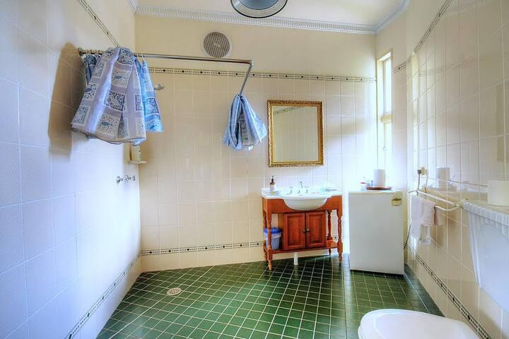 Bathroom Across Hall (Private)