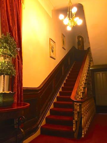 Grand walnut stairs 3