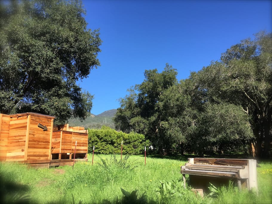 elements of the nature connection grove experience.. redwood bath house. haunted piano. glorious Santa Barbara mountain range