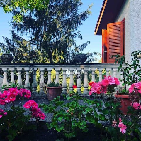 Il Bosco,  la tua casa tra natura ,relax e cultura