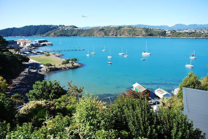 Spacious home, magnificent views. - Wellington - House
