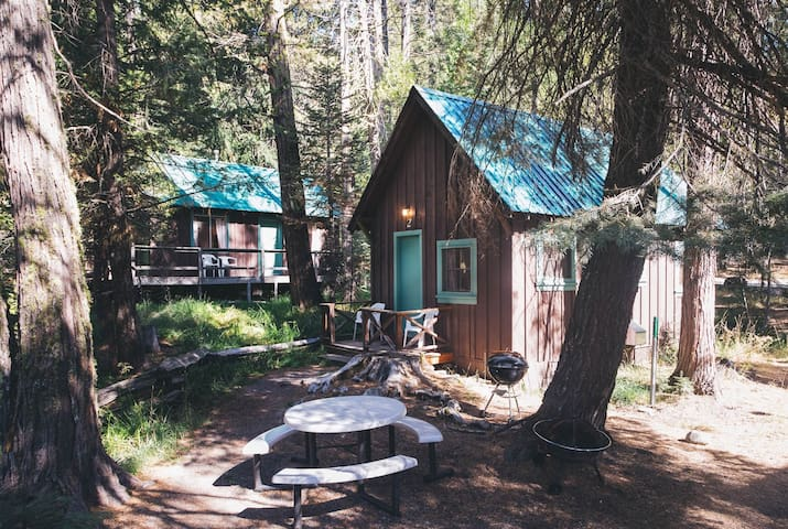 Quaint Rustic Cabin near Lassen National Park