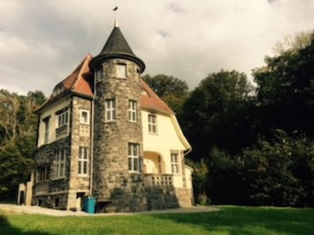 Villa Steinsburg