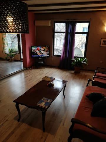 Бутиков апартамент, идеален център