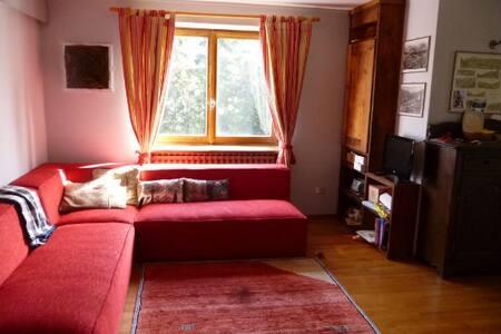 Splendido e soleggiato alloggio - Antagnod