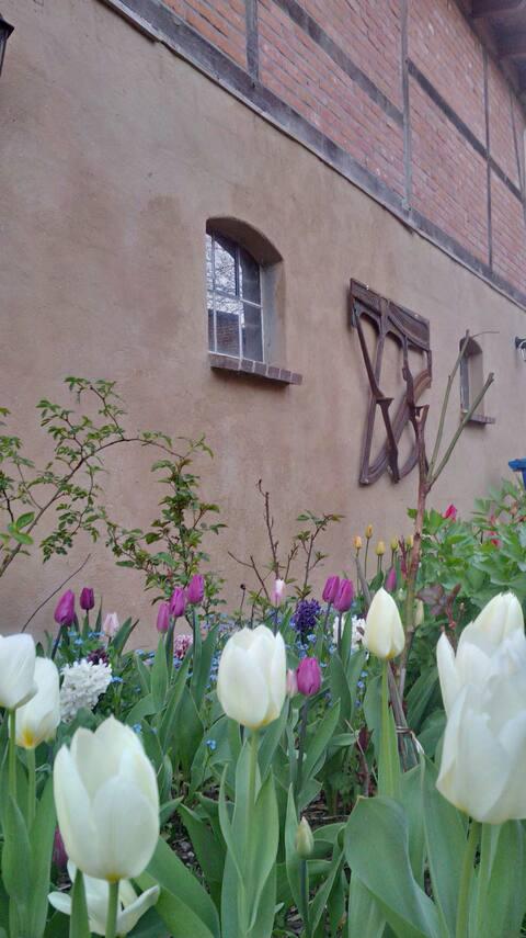 Moorgartenhaus - romantische Ferienwohnung