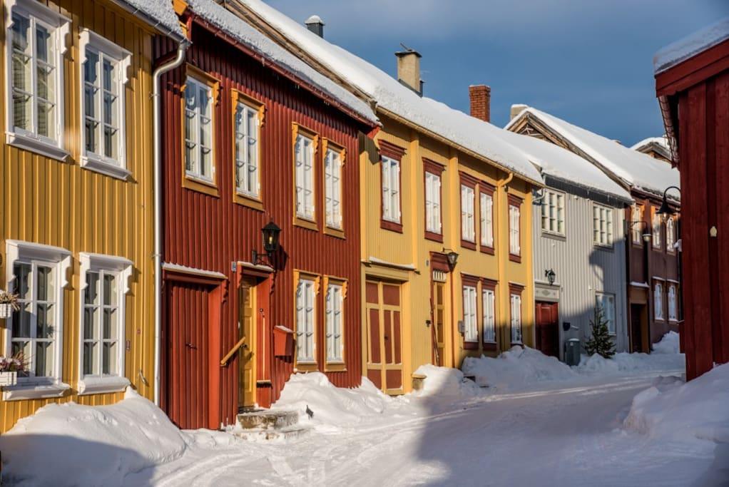 Kanefarten kjører rett forbiExperience the authentic living in the World heritage area