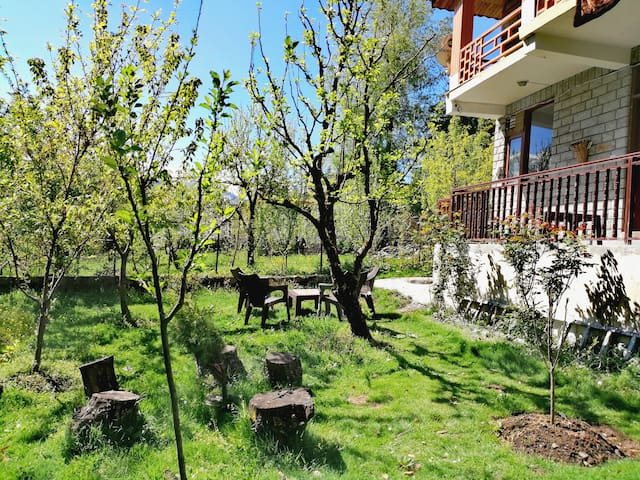 Garden area with apricot, apple and cherry trees!