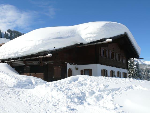 Ferienwohnung Maisäß Garfrescha - Sankt Gallenkirch - Xalet