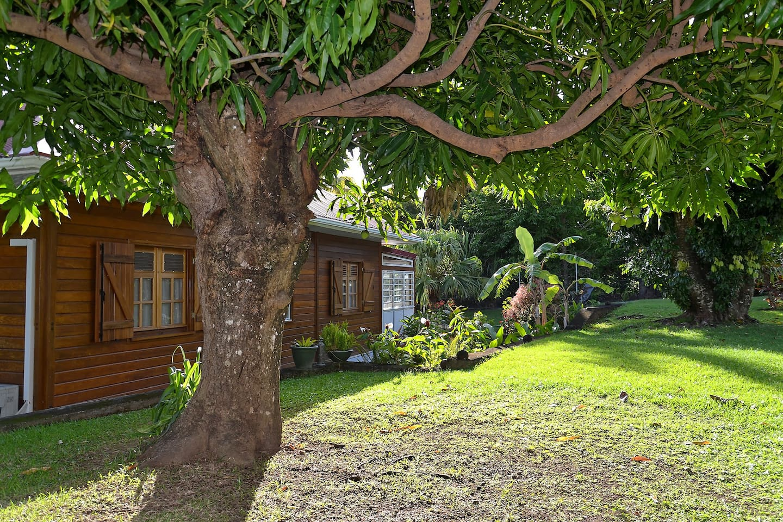 Gîte les Arawaks niché dans un magnifique jardin tropical