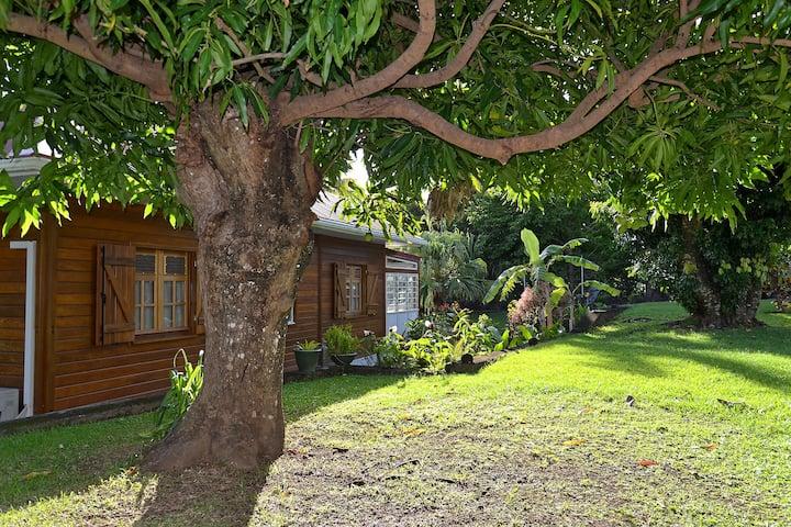 Gîte de Charme Les Arawaks dans un jardin tropical