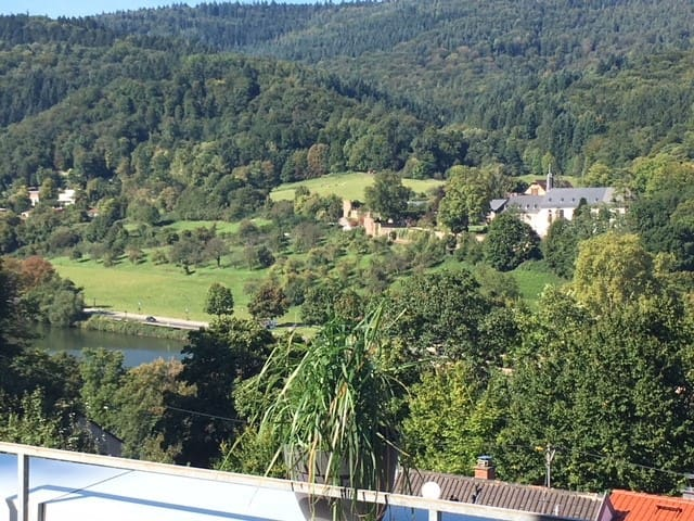 Heidelberg monastery view