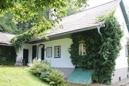 Hochtann - Entspannungsoase im Grünen (Alleinlage)