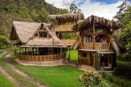 Bungalow Bosque Nublado (a 6km de Mindo)