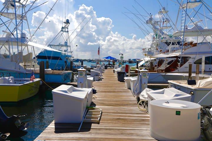 Cozy Island Getaway in Palm Beach Shores #19