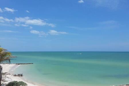 Sand Castle - OceanFront Modern Luxury 4Bdrm House - Chuburná - Дом