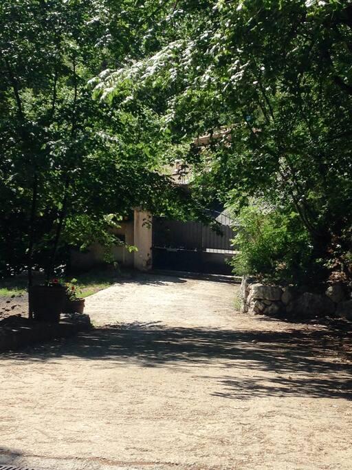 Propriété dans les arbres fermée par un portail