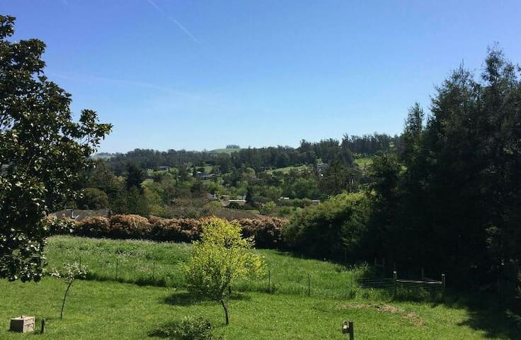 Quiet and Peaceful Country Setting - Petaluma - Dom