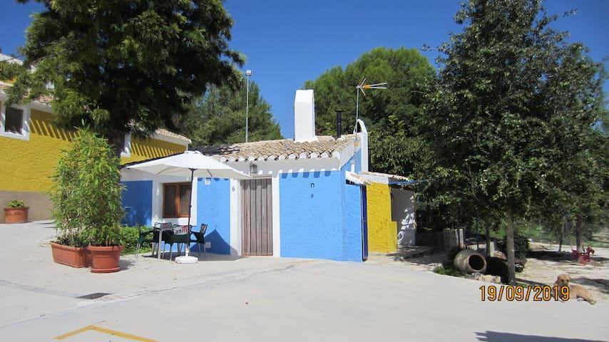 Rapia. Casa Azul 6