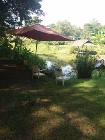 Peaceful in teakwood 5 acres farmstay in Lopburi - Tambon Chai Badan - Dům