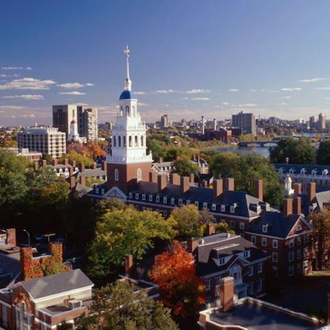 Your Cambridge Guide