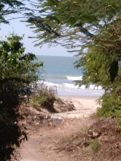 My paradise between forest and sea in Casamance