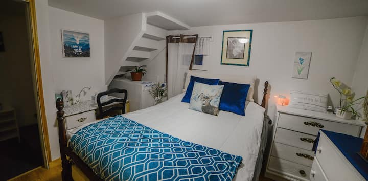 Beachside Blue Stag basement suite