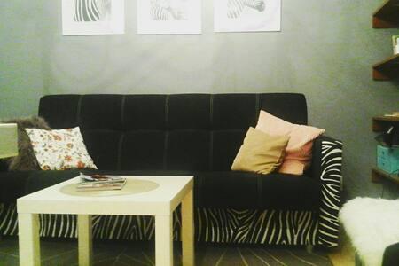 Cozy place in the city of art - Łódź