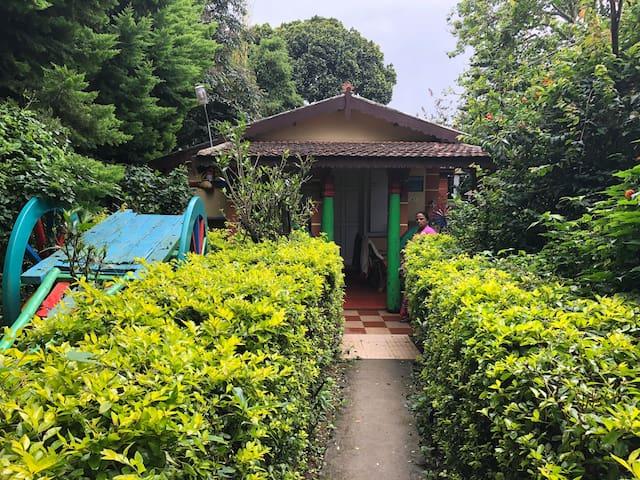 Fuschia cabin # 5