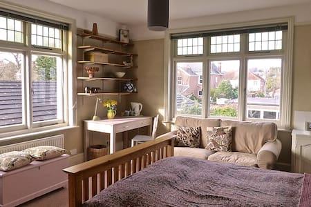 Attractive double bedroom in Exeter - Exeter - Wikt i opierunek