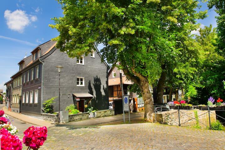 Ferienwohnung Abzuchtperle, Altstadt Goslar - Goslar - Flat