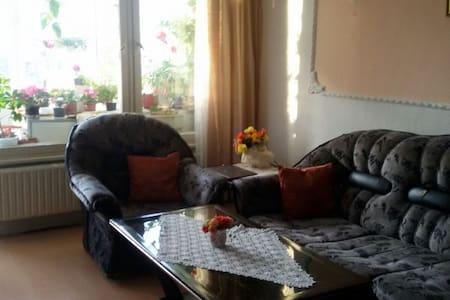 Nice room in beutiful Kladno - Kladno - Pis