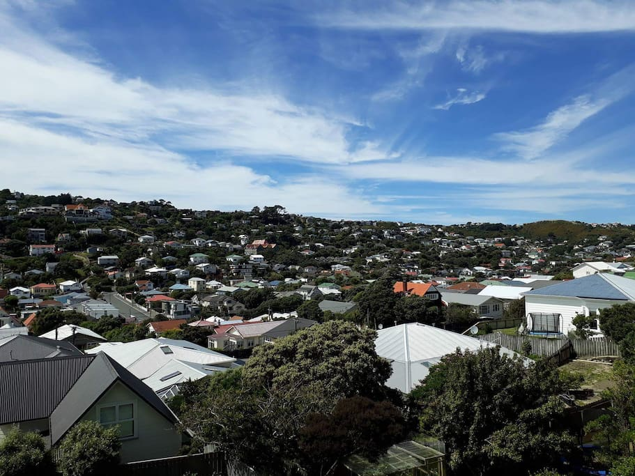 Can't beat Wellington on a good day...