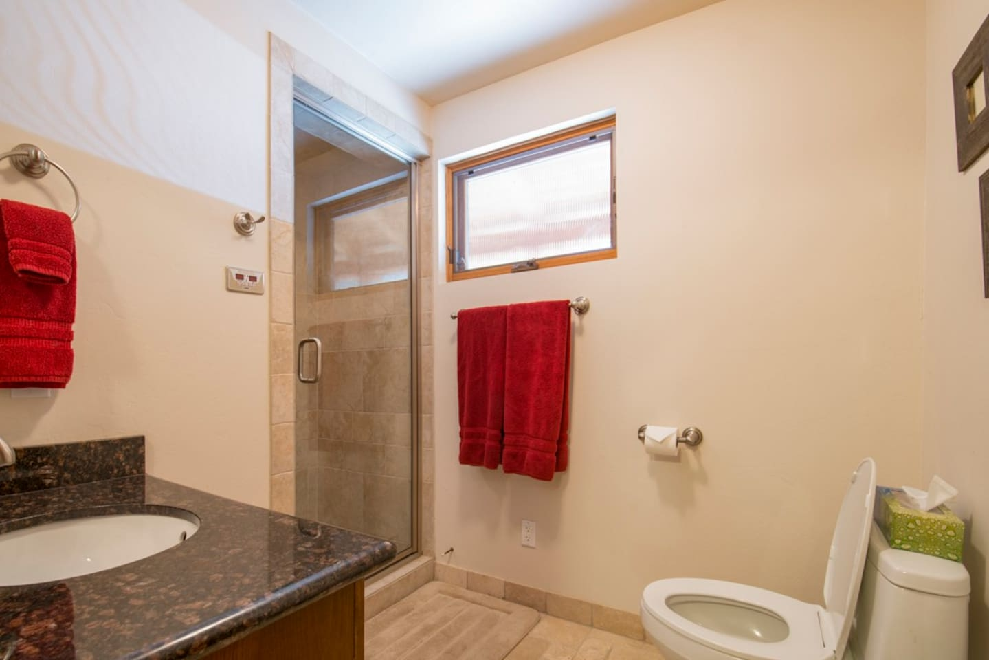 Downstairs bathroom with large stone shower.