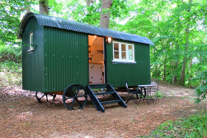Shepherd Hut near Battle, Private Woods & Firepit